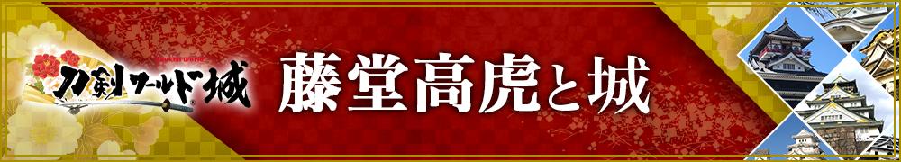 藤堂高虎と城